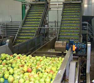 current situation of apple juice industry