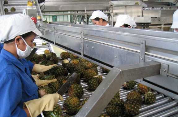 Processing flow of pineapple juice